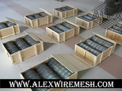 metal mesh conveyor belt