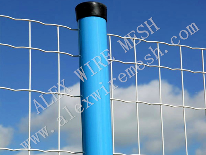 PRODUCT / Euro Fence_Wire Mesh Factory|SS Wire Mesh|Conveyor Belt ...